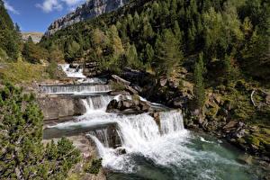 Картинка Испания Водопады Леса Камень Ordesa Valley, Huesca, Aragon Природа