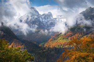 Картинки Швейцария Гора Осенние Лес Glarus region Природа