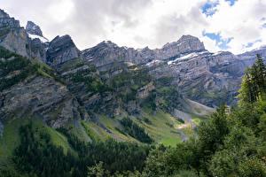 Обои Швейцария Гора Лес Альпы Каньон Природа