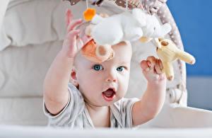 Фото Игрушка Младенцы Руки Смотрит