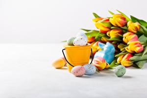 Обои Тюльпаны Пасха Яйцами Ведра