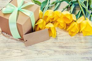 Фото Тюльпаны Шаблон поздравительной открытки Коробки Подарков