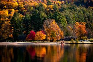 Фотографии Америка Осень Парки Речка Дерева Vermont