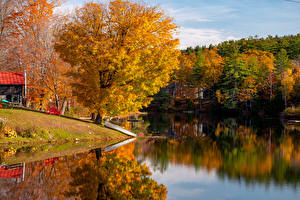 Фотография Штаты Осень Речка Лодки Деревьев Vermont Природа