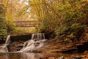 Картинка Америка Осенние Водопады Мост Дерева Jefferson National Forest Virginia