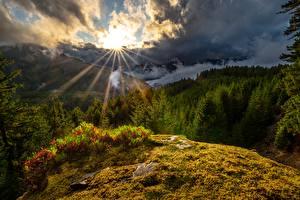 Картинка США Горы Солнца Облака Деревья Washington State, White Pass