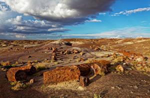 Картинки Штаты Парки Небо Камень Облака Petrified Forest National Park