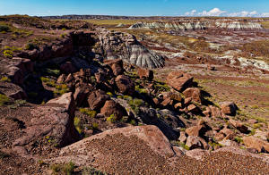 Фотографии Америка Парк Камень Скала Petrified Forest National Park