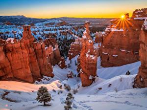 Картинки Америка Парки Зимние Рассветы и закаты Снег Скала Лучи света Ель Каньон Bryce Canyon National Park Природа