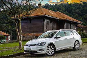 Обои Volkswagen Белых Металлик 2018-20 Golf TSI Variant Latam