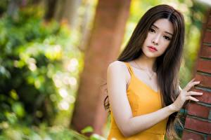 Фотографии Азиаты Боке Руки Смотрит Девушки