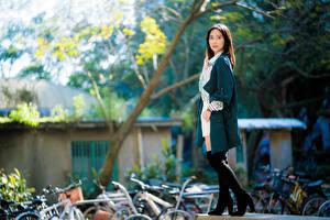 Фото Азиаты Боке Позирует Взгляд молодая женщина