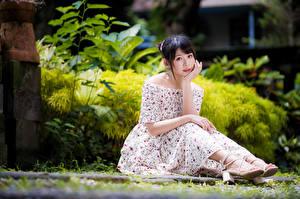 Картинка Азиаты Платье Сидя Смотрят Размытый фон девушка