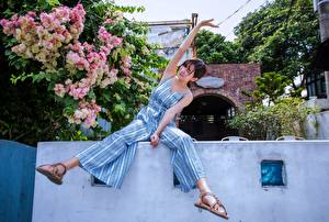 Фотография Азиатки Цветущие деревья Сидя Ноги девушка