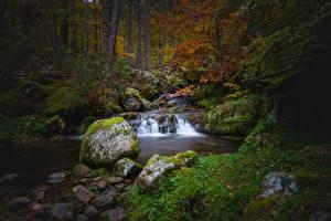Фотография Осень Камень Мхом Ручей Природа