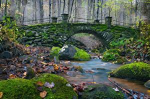 Фотографии Мост Камень Осень Мох Лист Ручеек Природа