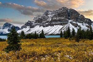 Фотография Канада Горы Ели Rocky Mountains, Alberta
