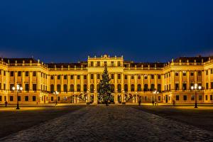 Картинки Новый год Австрия Вена Дворец Ночь Городской площади Новогодняя ёлка Уличные фонари Schönbrunn Palace город