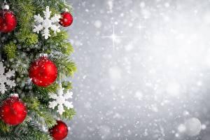 Фото Новый год На ветке Снег Снежинки Шарики Шаблон поздравительной открытки