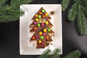 Фото Рождество Торты Шоколад Дизайна Новогодняя ёлка Ветки Шар Слово - Надпись Английская Шишки Пища