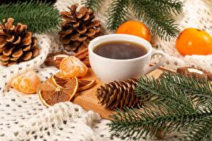 Фотографии Новый год Кофе Мандарины Чашка Ветки Шишки Продукты питания