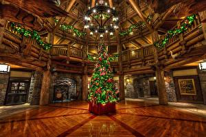 Фотография Рождество Диснейленд Штаты Парк Калифорнии Новогодняя ёлка Люстры Электрическая гирлянда