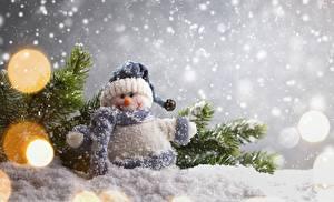 Фотография Рождество Снег Ветвь Снеговики