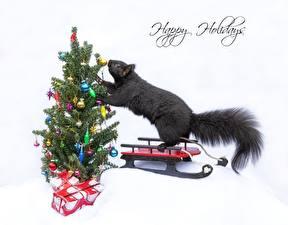 Картинки Новый год Белки Елка Подарков Сани Слова Английская