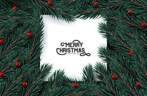 Картинка Рождество Векторная графика Слова Английский Ветки Шарики