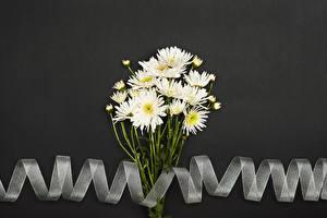 Обои для рабочего стола Хризантемы Сером фоне Белый Ленточка цветок
