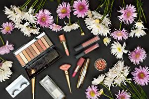 Фото Хризантемы Много Губная помада Косметика Сером фоне Цветы