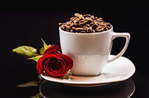 Фотография Кофе Розы Чашке Кружке Зерна Цветы