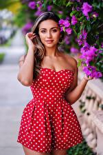 Картинки Платье Позирует Руки Смотрит молодые женщины