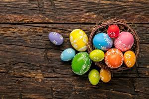 Фотографии Пасха Яйца Разноцветные