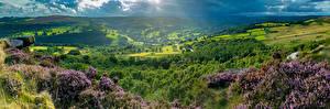 Фото Англия Пейзаж Холм Холмы Peak District Природа