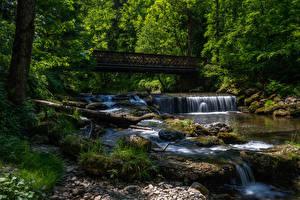 Картинка Германия Леса Река Водопады Мосты Камни Бавария Мхом Природа