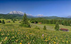 Фотография Германия Горы Луга Лето Пейзаж Бавария Альпы Природа