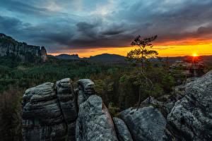 Фотографии Германия Рассвет и закат Горы Лес Деревьев Лучи света Elbe Sandstone mountains Природа