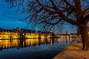 Фото Голландия Вечер Здания Пруд Набережная Дерево Hofvijver, The Hague Города