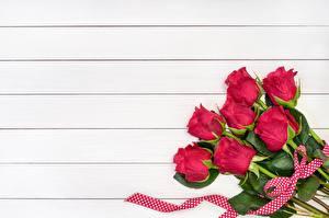 Картинка Роза Красные Доски Шаблон поздравительной открытки Цветы