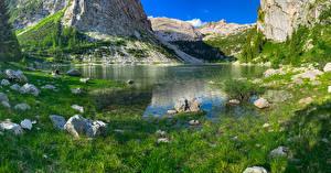 Фотография Словения Озеро Камень Скалы Траве Krn Lake