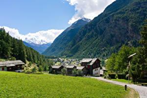 Фото Швейцария Дома Гора Лес Альп Поселок Трава village Randa Города