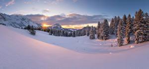 Фотографии Швейцария Гора Зима Пейзаж Альп Снега Ель Schwägalp Природа