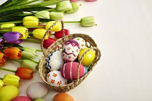 Фото Тюльпаны Пасха Яйца Корзинка цветок