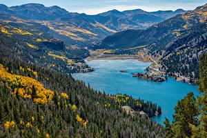 Фотографии Штаты Озеро Гора Леса Осенние Пейзаж Lake City, Colorado Природа