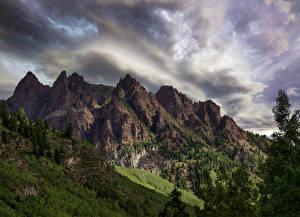 Картинки США Гора Ветвь Sievers Mountain Colorado
