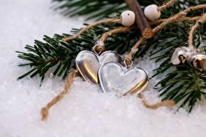 Фотография Зимние Новый год Снег Ветки Сердца