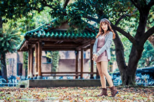 Картинка Азиатки Шатенка Платье Берет Ноги Взгляд молодая женщина