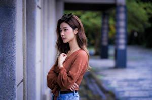 Фотографии Азиатки Свитер Руки Взгляд Шатенки Девушки