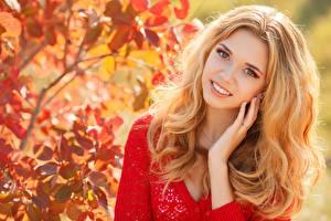 Фотография Осенние Размытый фон Блондинка Смотрят Улыбка Руки Волосы девушка